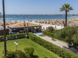 Ver Apartamento 2 habitaciones con piscina, Port dAlcudia en Alcúdia