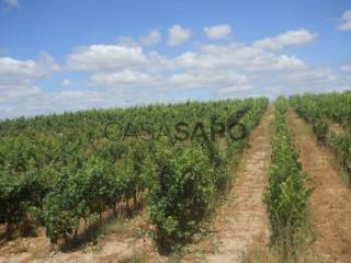 Voir Ferme agricole 4 Pièces, Melo e Nabais à Gouveia