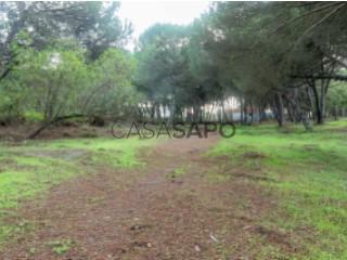 Ver Terreno Urbano, Lagoa de Albufeira, Sesimbra (Castelo), Setúbal, Sesimbra (Castelo) em Sesimbra