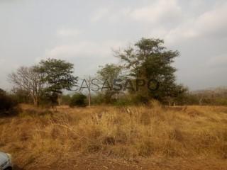 Ver Terreno Comercial  em Bengo