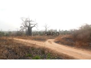 Ver Terreno Misto  em Bengo